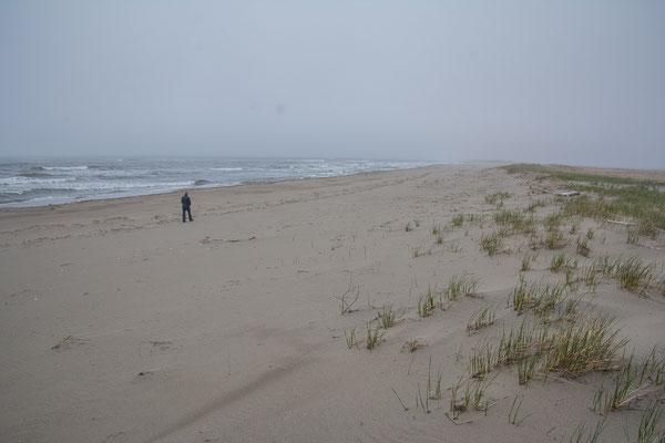 Noch sind wir allein am Beach