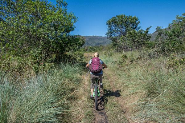 Für einmal nicht zu Fuss sondern auf dem Bike unterwegs