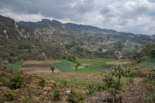 Terassenfelder in den Bergen
