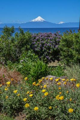 Vulkan Osorno über den See gesehen
