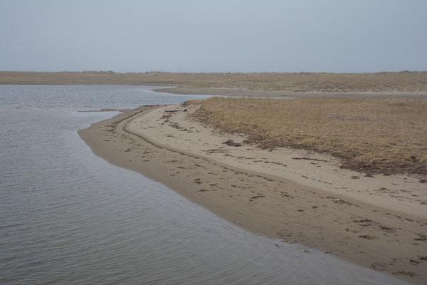 Im Kouchibouguac  NP an der Küste New Brunswicks