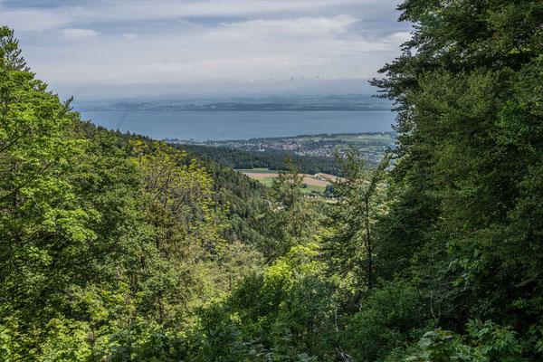 Aussicht über den Neuenburger See in die Alpen