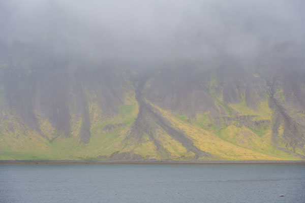 Südküste der Westfjorde im Nebel