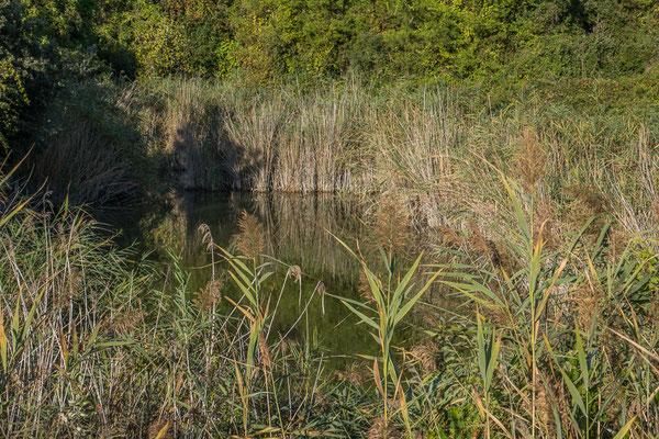 Mavrobara Naturreservat