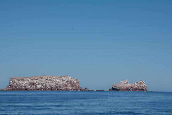Isla Lobero, das Schnorchelparadies