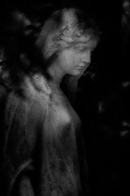 Im Licht der Zuversicht -  © Helga Jaramillo Arenas - Fotografie und Poesie / April 2021