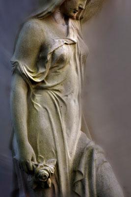 Der Rosengruß - © Helga Jaramillo Arenas - Fotografie und Poesie / April 2015