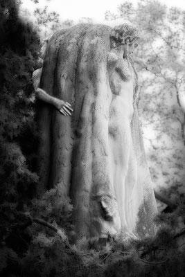 Die Entdeckung des anderen Selbst - © Helga Jaramillo Arenas - Fotografie und Poesie / August 2017