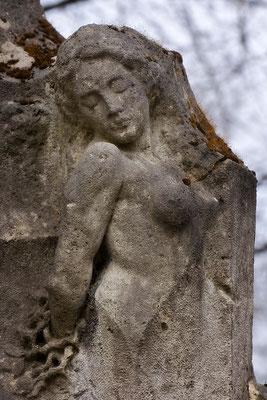 Verwurzelt und verschmolzen im Stein - © Helga Jaramillo Arenas - Fotografie und Poesie  / Juni 2015