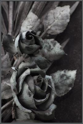 Rosen der Erinnerung - © Helga Jaramillo Arenas - Fotografie und Poesie / Januar 2017