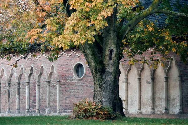 Im Schutze des Baumes / Wörlitz - © Helga Jaramillo Arenas - Fotografie und Poesie / Mai 2015