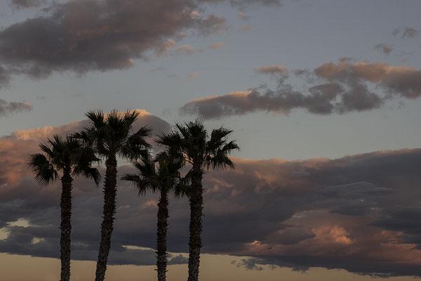 Wolkenkratzer - © Helga Jaramillo Arenas - Fotografie und Poesie / Februar 2020