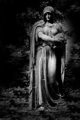 In Blüten wandeln - © Helga Jaramillo Arenas - Fotografie und Poesie  / August 2015