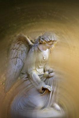 Die schützende Kraft der Engel - © Helga Jaramillo Arenas - Fotografie und Poesie / März 2015