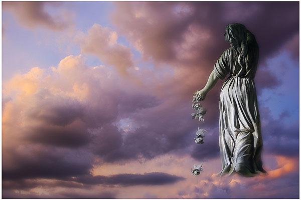 Seelenflügel - © Helga Jaramillo Arenas - Fotografie und Poesie / August 2012