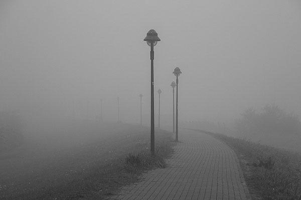 Im Nebel - © Helga Jaramillo Arenas - Fotografie und Poesie / November 2018