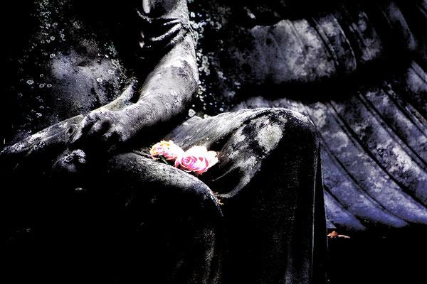 Rosen im Schoß (2) - © Helga Jaramillo Arenas - Fotografie und Poesie / Februar 2016