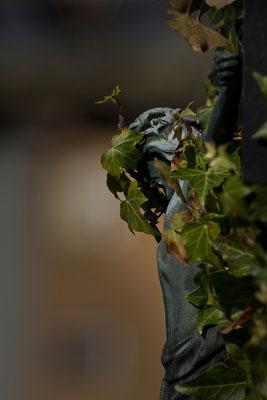 Schützendes Grün - © Helga Jaramillo Arenas - Fotografie und Poesie / Mai 2015