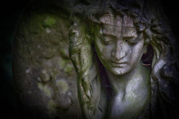 Trägt die Liebe im Angesicht - © Helga Jaramillo Arenas - Fotografie und Poesie / November 2013