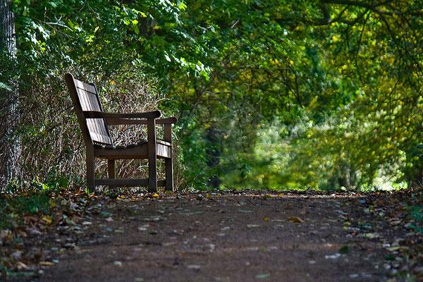 Ruheplatz - © Helga Jaramillo Arenas - Fotografie und Poesie / November 2012