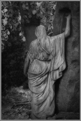 Erdgebunden - © Helga Jaramillo Arenas - Fotografie und Poesie / März 2017