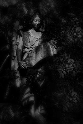 Die Prophezeiung - © Helga Jaramillo Arenas - Fotografie und Poesie / Mai 2019