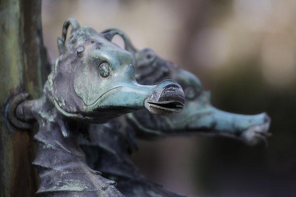 Drachenkinder - © Helga Jaramillo Arenas - Fotografie und Poesie / Februar 2019