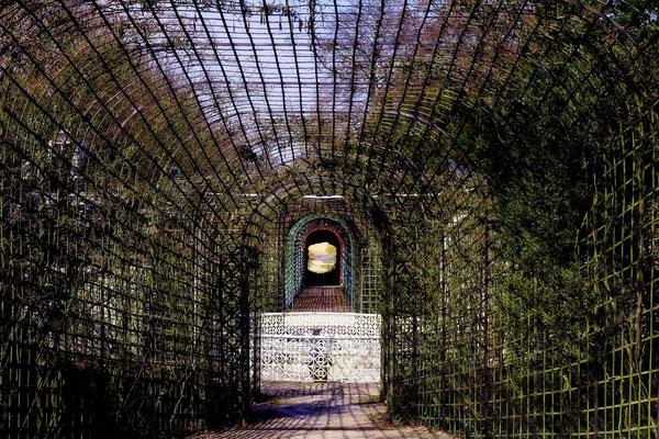 Am Ende der Welt (3) / Schloßgarten Schwetzingen - © Helga Jaramillo Arenas - Fotografie und Poesie / März 2015