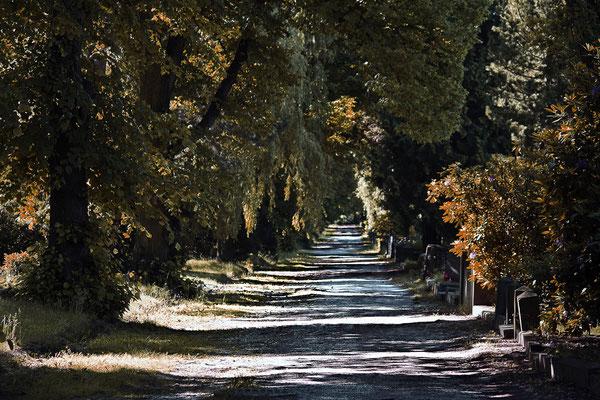 Lichtweg - © Helga Jaramillo Arenas - Fotografie und Poesie / September 2014