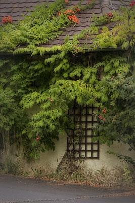 Das alte Haus - © Helga Jaramillo Arenas - Fotografie und Poesie / August 2018