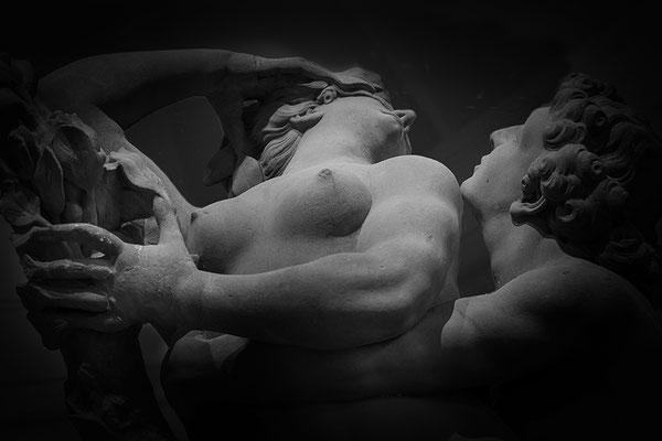Das grausame Schicksal - © Helga Jaramillo Arenas - Fotografie und Poesie / November 2016