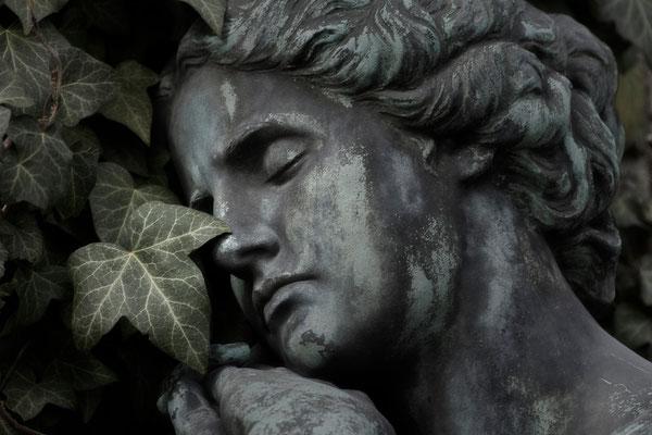 Sternenbegleiter - © Helga Jaramillo Arenas - Fotografie und Poesie  / Juni 2015