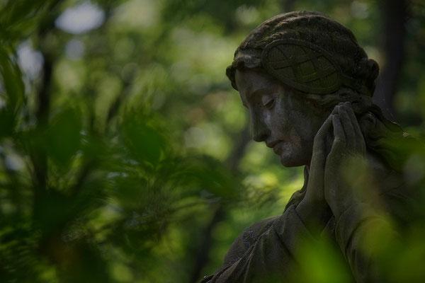 Im schützendem Grün - © Helga Jaramillo Arenas - Fotografie und Poesie / Mai 2014