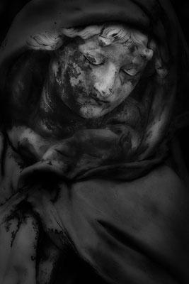 Leid der Erde -  © Helga Jaramillo Arenas - Fotografie und Poesie / Januar 2021