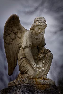 Die zärtlichen Gesten der Engel - © Helga Jaramillo Arenas - Fotografie und Poesie / Mai 2015