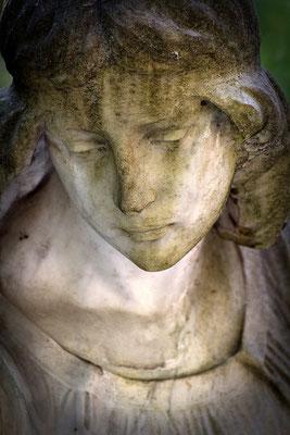 Dein zärtliches Angesicht - © Helga Jaramillo Arenas - Fotografie und Poesie  / August 2015