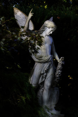 Die fliehenden Schatten (1) - © Helga Jaramillo Arenas - Fotografie und Poesie / Oktober 2016