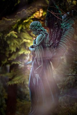 Engel des Schutzes - © Helga Jaramillo Arenas - Fotografie und Poesie / März 2015