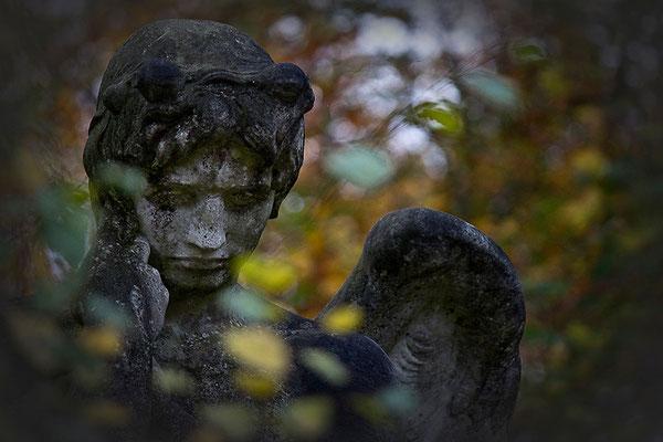 In den Armen des Herbstes - © Helga Jaramillo Arenas - Fotografie und Poesie / November 2013