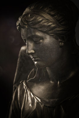 Stille Schönheit - © Helga Jaramillo Arenas - Fotografie und Poesie / Januar 2015