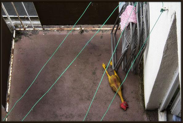 Der Hahn ist tot - © Helga Jaramillo Arenas - Fotografie und Poesie / September 2017
