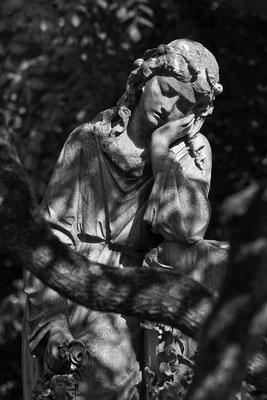 Im Schattenlicht - © Helga Jaramillo Arenas - Fotografie und Poesie / Juni 2012