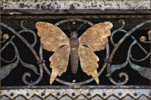 Wiederkehrend - © Helga Jaramillo Arenas - Fotografie und Poesie / Mai 2015