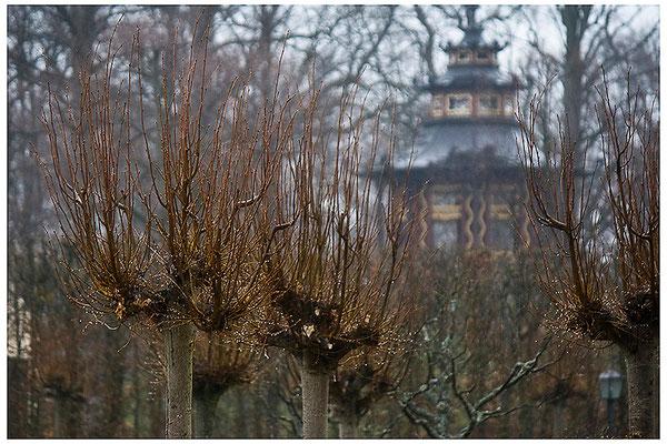 Regentage in der Eremitage / Bayreuth - © Helga Jaramillo Arenas - Fotografie und Poesie / April 2012