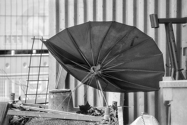 Der Schirm - © Helga Jaramillo Arenas - Fotografie und Poesie / Mai 2018