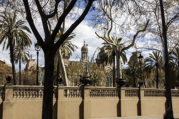 Frühling in Barcelona - © Helga Jaramillo Arenas - Fotografie und Poesie / März 2019
