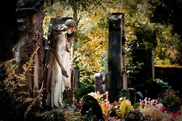 Zu ihren Füßen ruhen die Rosen - © Helga Jaramillo Arenas - Fotografie und Poesie  / August 2015
