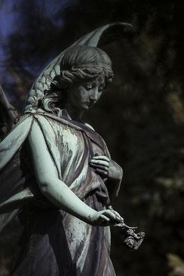 Die Stille in der lauten Zeit - © Helga Jaramillo Arenas - Fotografie und Poesie / März 2018