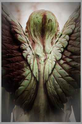 Im Schutze von Flügel - © Helga Jaramillo Arenas - Fotografie und Poesie  / Januar 2014