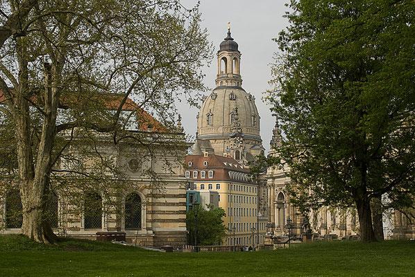 Hervorgelugt / Dresden - © Helga Jaramillo Arenas - Fotografie und Poesie / Mai 2011